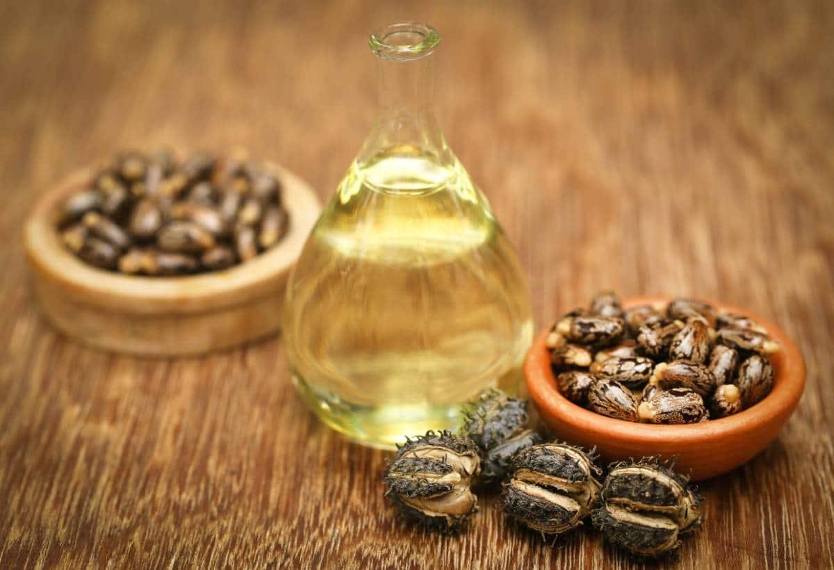 huile et graines de ricin : bienfaits pour le corps