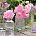préparation florales