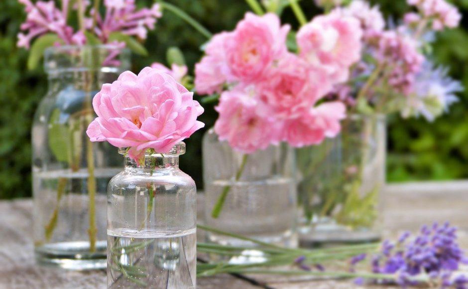 Qu'est-ce que la phytothérapie et l'aromathérapie ?